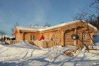 Rąstinis namas (2)